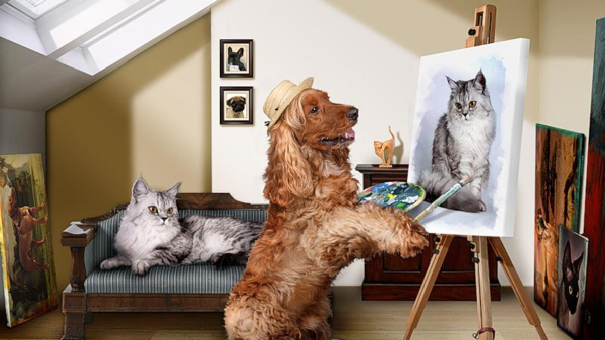 Entertainment Gallery Dog Photomontage 5