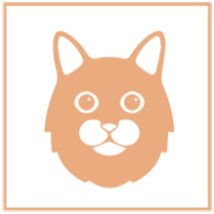 Rehome Cat Icon